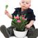Giftige Zimmerpflanzen – Kinder haften für Ihre Eltern